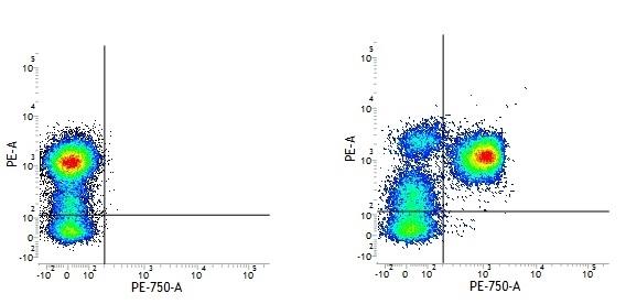 Mouse IgG1 Negative Control Antibody (Human) thumbnail image 10