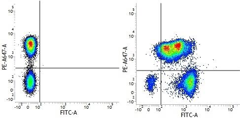 Mouse IgG1 Negative Control Antibody (Human) thumbnail image 13