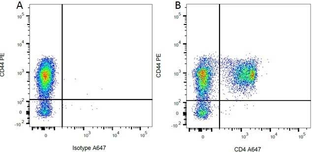 Mouse IgG2a Negative Control Antibody - Human thumbnail image 3