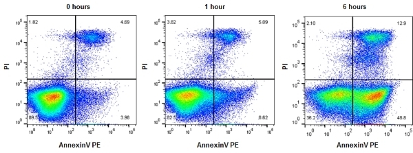 Annexin V:Pe Assay Kit - 200 Tests gallery image 1