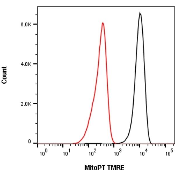 Mito Membrane Potential MitoPT TMRE Kit thumbnail image 1