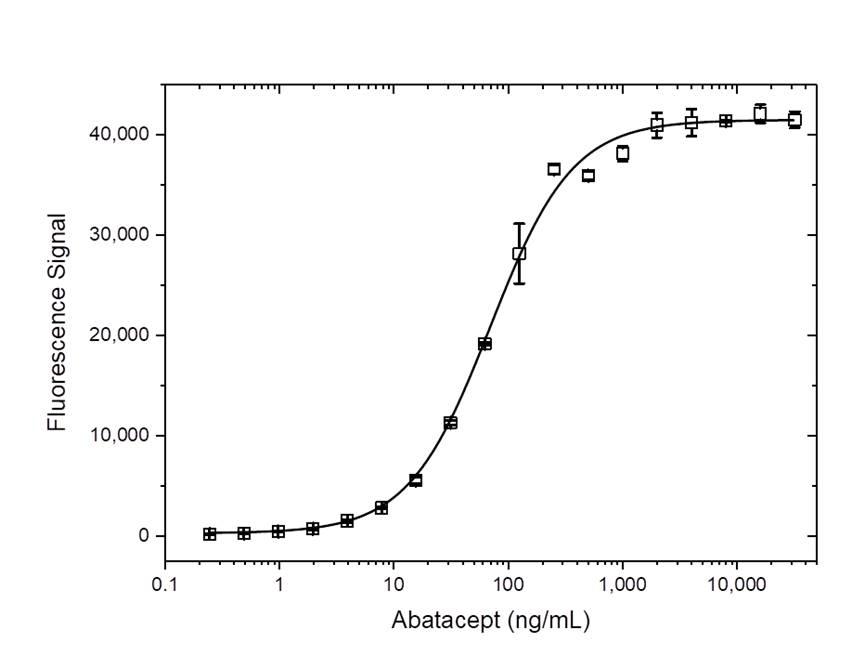 Anti Abatacept Antibody, clone AbD37058ia thumbnail image 5