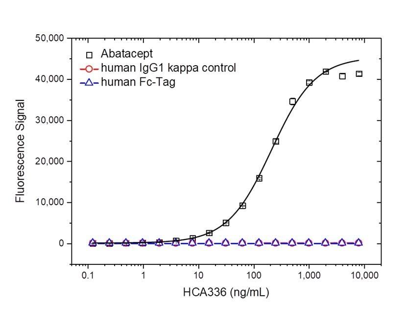 Anti Abatacept Antibody, clone AbD37065ia thumbnail image 2