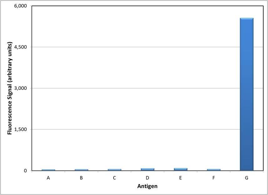 Anti Alemtuzumab Antibody, clone AbD16728 thumbnail image 1
