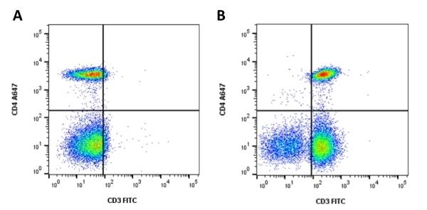 Anti Bacterial Alkaline Phosphatase Antibody, clone AbD25296_hIgG2 thumbnail image 4