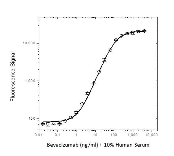 Anti Bevacizumab Antibody, clone AbD17976 thumbnail image 3