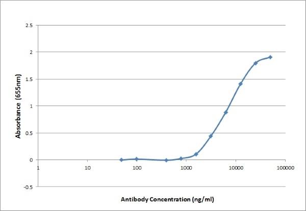 Anti CAT IgG/A/M Antibody, clone K185 4D4 thumbnail image 3