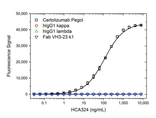 Anti Certolizumab Pegol Antibody, clone AbD34136ia thumbnail image 2