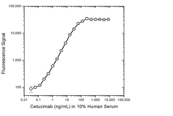 Anti Cetuximab Antibody, clone AbD19376_hIgG1 thumbnail image 3