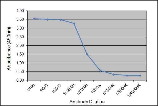 Anti Chicken IgY Antibody, clone 161.9F2 gallery image 1