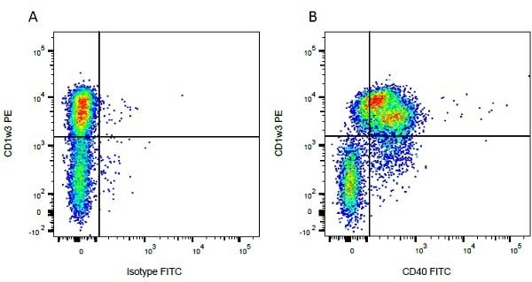 Anti Bovine CD1w3 Antibody, clone CC43 thumbnail image 1