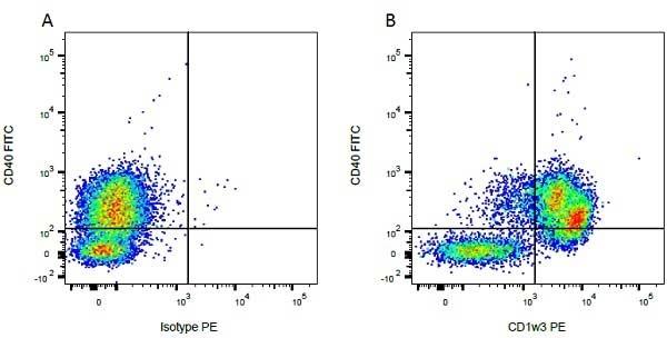 Anti Bovine CD1w3 Antibody, clone CC43 thumbnail image 2