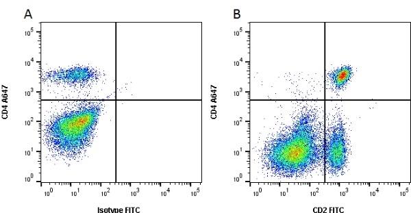 Anti Bovine CD2 Antibody, clone CC42 thumbnail image 1