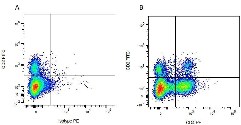 Anti Bovine CD2 Antibody, clone CC42 thumbnail image 2