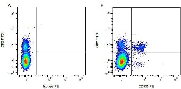 Anti Bovine CD2 Antibody, clone CC42 thumbnail image 7