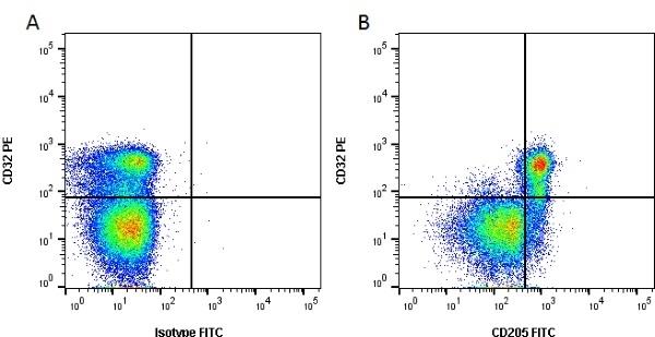 Anti Bovine CD205 Antibody, clone IL-A114 thumbnail image 1