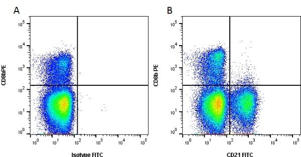 Anti Bovine CD21 Antibody, clone CC21 thumbnail image 1