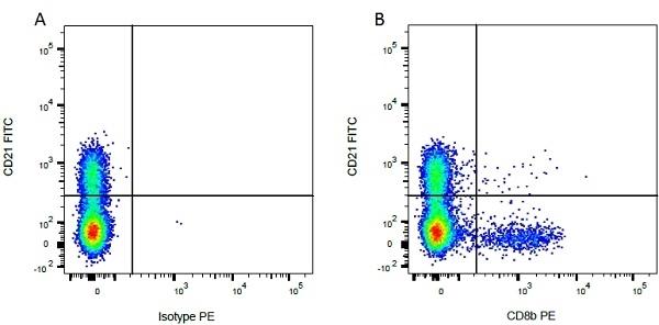 Anti Bovine CD21 Antibody, clone CC51 thumbnail image 5