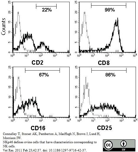Anti Bovine CD25 Antibody, clone IL-A111 thumbnail image 1