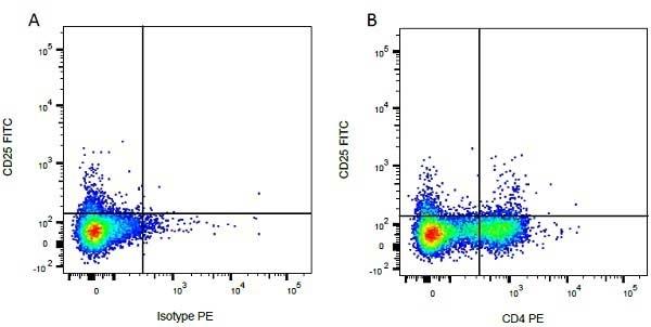 Anti Bovine CD25 Antibody, clone IL-A111 thumbnail image 2