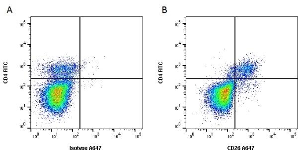 Anti Bovine CD26 Antibody, clone CC69 thumbnail image 1