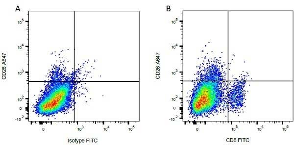 Anti Bovine CD26 Antibody, clone CC69 thumbnail image 2