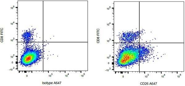 Anti Bovine CD26 Antibody, clone CC69 thumbnail image 3