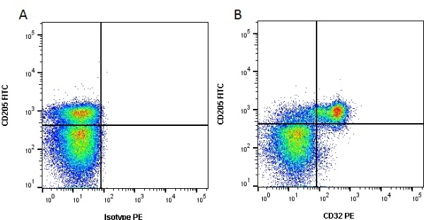 Anti Bovine CD32 Antibody, clone CCG36 thumbnail image 1