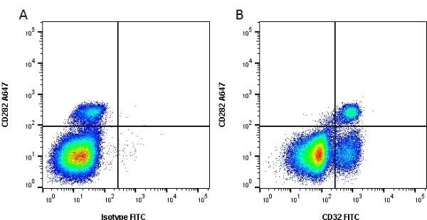 Anti Bovine CD32 Antibody, clone CCG39 thumbnail image 1