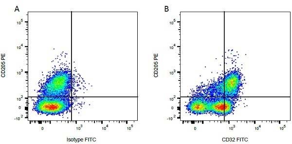 Anti Bovine CD32 Antibody, clone CCG39 thumbnail image 2