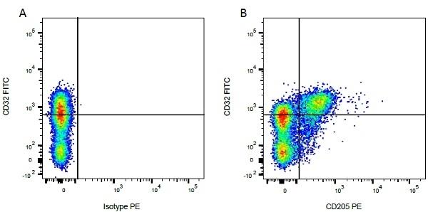 Anti Bovine CD32 Antibody, clone CCG39 thumbnail image 3