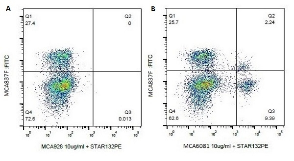 Anti Bovine CD4 Antibody, clone CACT138A gallery image 1