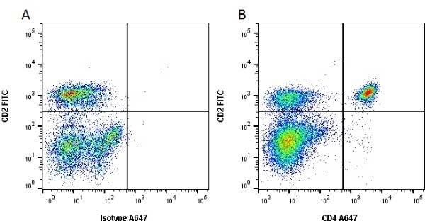 Anti Bovine CD4 Antibody, clone CC8 thumbnail image 1