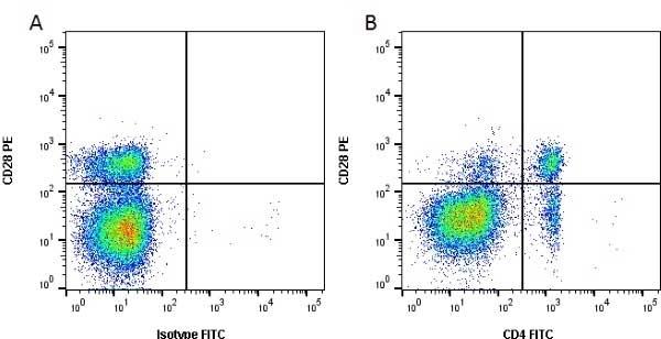 Anti Bovine CD4 Antibody, clone CC8 thumbnail image 12