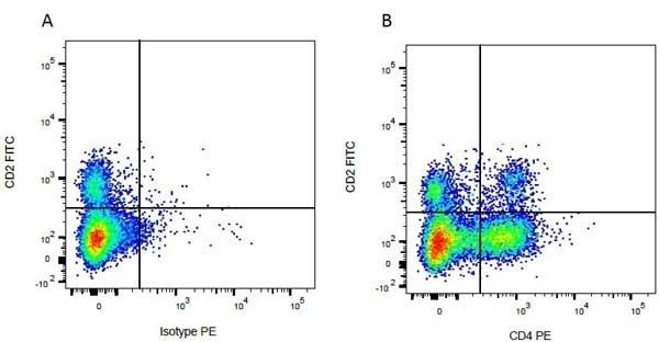 Anti Bovine CD4 Antibody, clone CC8 thumbnail image 6