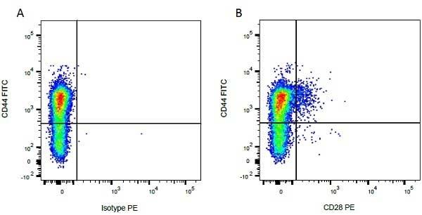Anti Bovine CD44 Antibody, clone IL-A118 thumbnail image 5