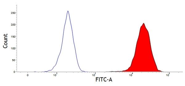 Anti Bovine CD45 Antibody, clone CC1 gallery image 1