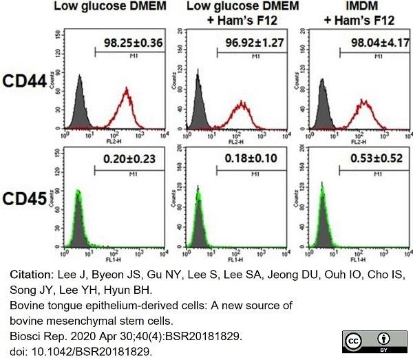 Anti Bovine CD45 Antibody, clone CC1 thumbnail image 2