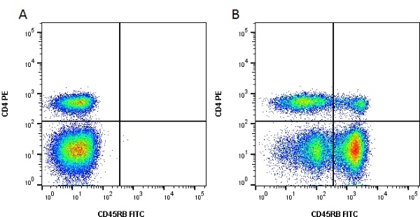 Anti Bovine CD45RB Antibody, clone CC76 gallery image 1