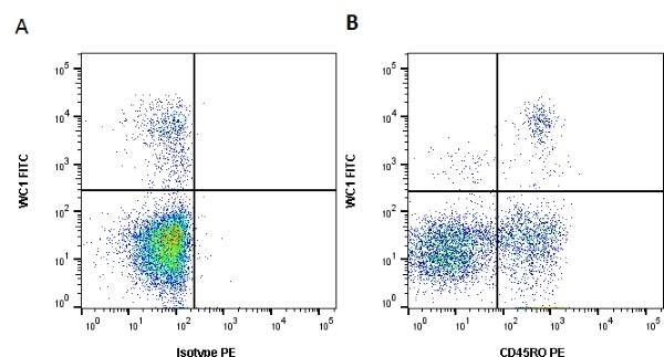 Anti Bovine CD45RO Antibody, clone IL-A116 thumbnail image 3