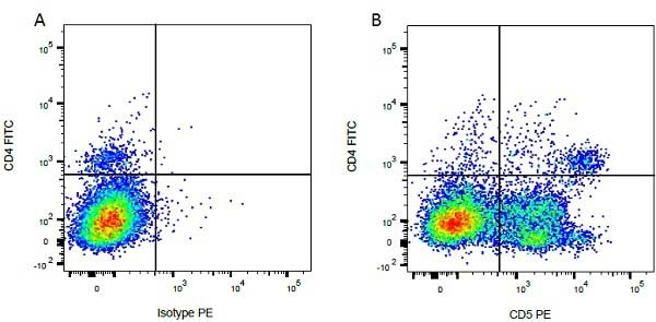 Anti Bovine CD5 Antibody, clone CC17 thumbnail image 4
