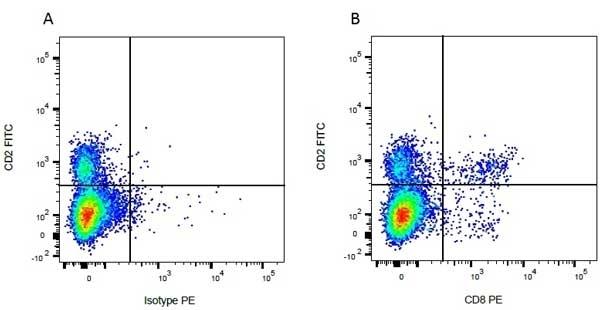 Anti Bovine CD8 Antibody, clone CC63 thumbnail image 5