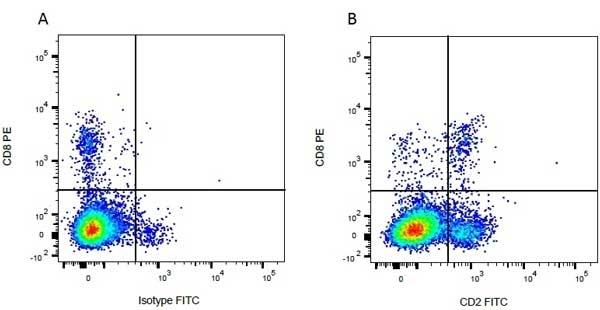 Anti Bovine CD8 Antibody, clone CC63 thumbnail image 6