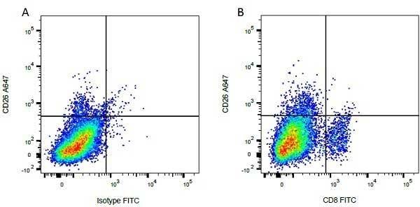 Anti Bovine CD8 Antibody, clone CC63 thumbnail image 7