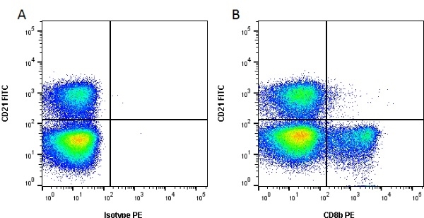 Anti Bovine CD8 Beta Antibody, clone CC58 thumbnail image 1