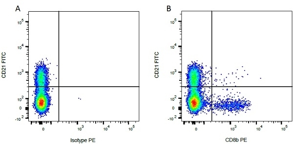 Anti Bovine CD8 Beta Antibody, clone CC58 thumbnail image 3