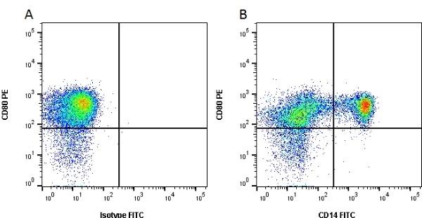 Anti Bovine CD80 Antibody, clone IL-A159 thumbnail image 2
