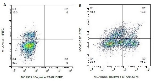 Anti Bovine CD8a Antibody, clone 7C2B gallery image 1