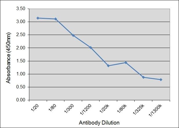 Anti Bovine IgA Antibody, clone IL-A71 gallery image 1