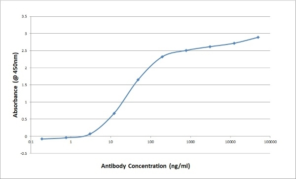 Anti Bovine/Ovine IgG/A/M Antibody, clone K67 3G2 thumbnail image 3